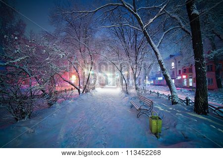 Winter landscape, night alley with bench. Beautiful light and atmosphere. The pathway creates depth
