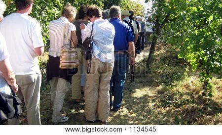 People/Men And Women  Waiting In Queue
