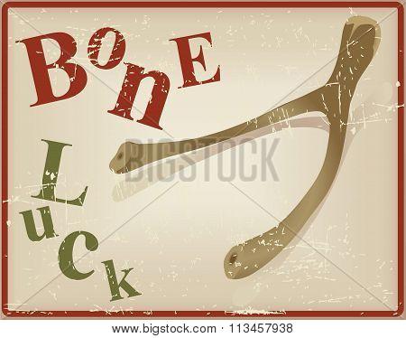 Bird Bone Superstitious Recognized Bone Luck