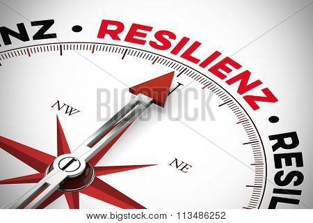 Arrow pointing to German word Resilienz (resilience) on a compass (3D Rendering)