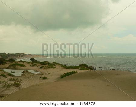 Sannscapes Of A Beach