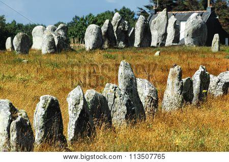 Carnac (brittany, France): Menhir