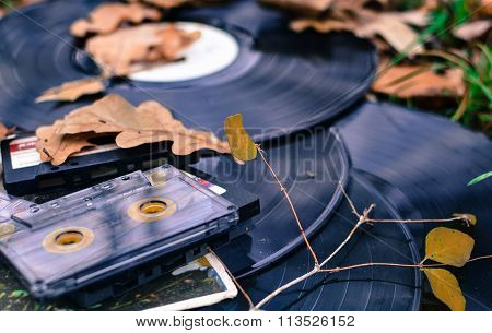 Old Cassettes And Records With Fallen Leaves