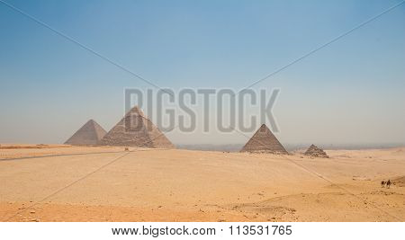 Pyramids Of Giza, Cairo, Egypt And Camels In The Foreground