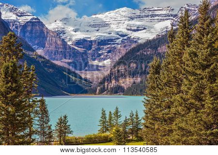 Banff National Park, Rocky Mountains, Canada. Emerald Lake is surrounded by mountains, glaciers and pine forests. Flowers on the embankment of glacial Lake Louise