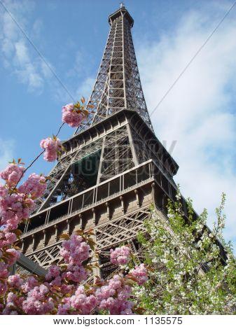 Eiffel Tower 407