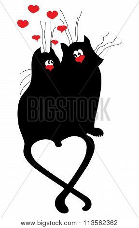 Cat Valentines day.