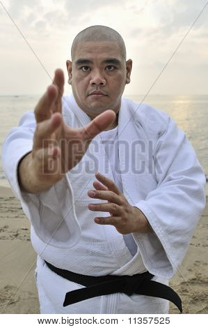 Aikido man