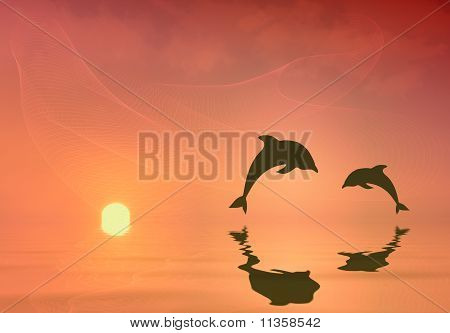 Silhouette of two Dolphins