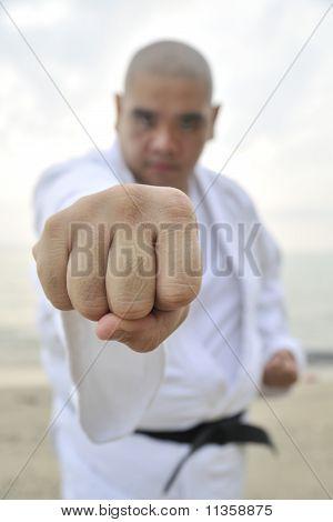 Aikido man doing a punch