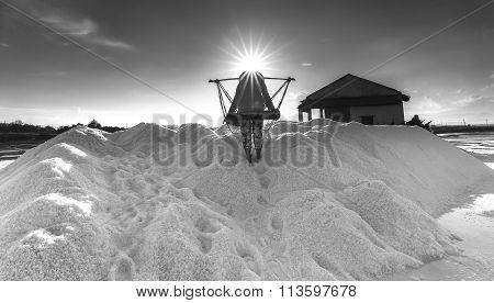Pour salt salt workers into heaps