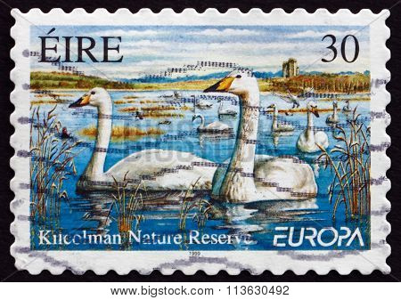 Postage Stamp Ireland 1999 Whooping Swans