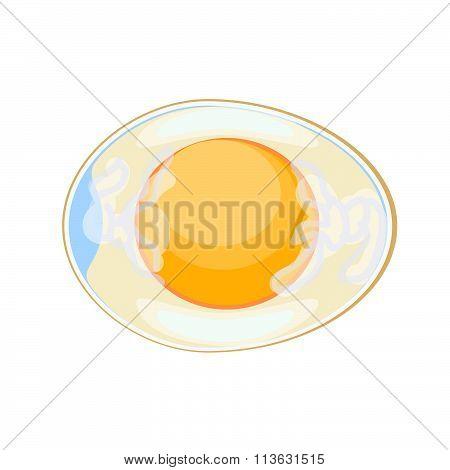 Hen's egg in cross section