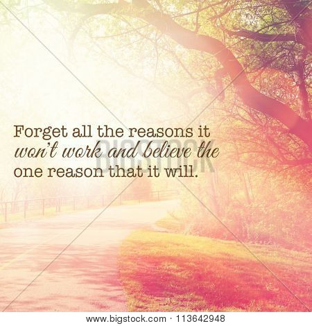 Inspirational Typographic Quote - Forget all the reasons it won't work and believe the one reason that it will