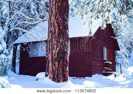 Rustic Cabin in Snow