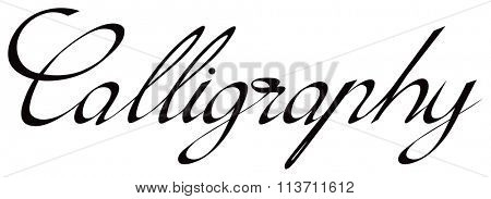 Calligraphy hand written text. All letters are separate vector objects. isolated on white background. Vector illustration.