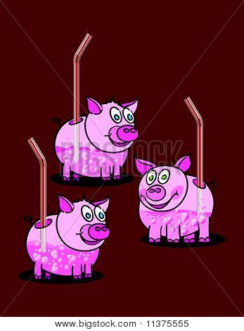 Piggy Drinks