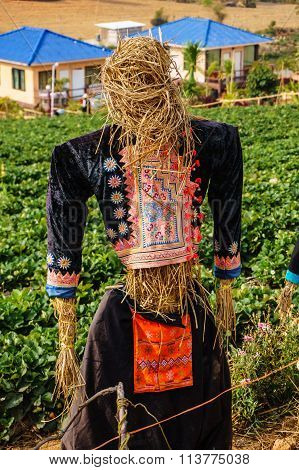 A Scarecrow On Farm