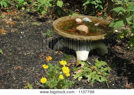 Japanese Birdbath