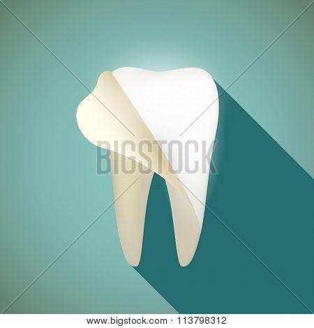 Human Teeth. Stock Illustration.