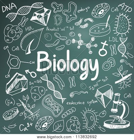 Biology Science Theory Doodle Handwriting And Tool Model Icon In Blackboard Background Used For Scho
