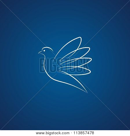 Dove logo over blue
