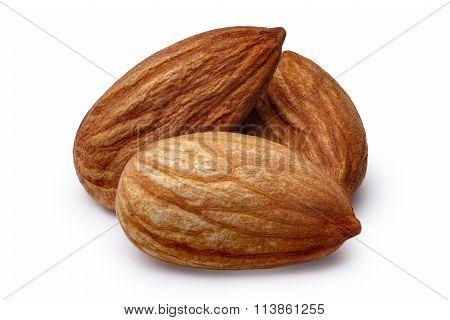 Three Almonds Isolated