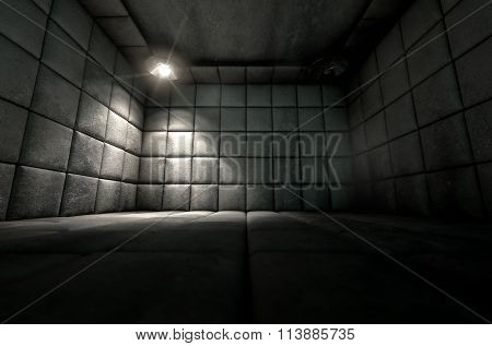 Padded Cell Dirty Spotlight