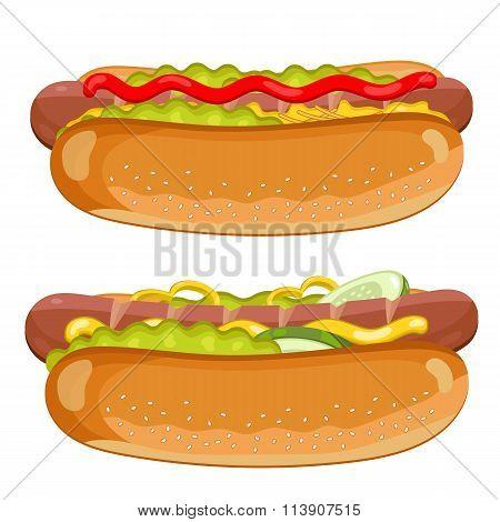 Hot Dog on white background.