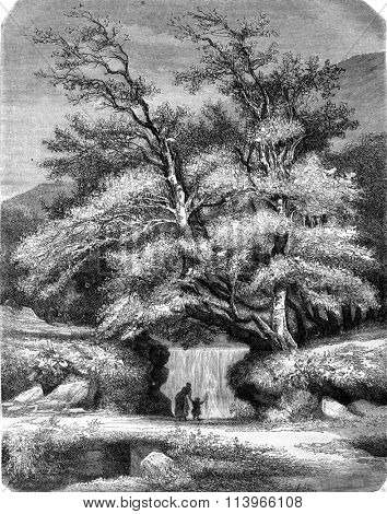Lys Valley, vintage engraved illustration. Magasin Pittoresque 1869.