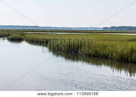 Pleasure House Point Marshland in Virginia Beach, Virginia