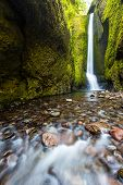 Lower Oneonta falls in summer Columbia river gorge Oregon poster