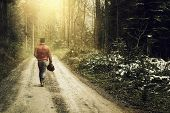 Nature footpath through snowy forest and walking alone man against fog and sunshine poster