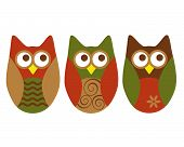 Three different owls on white in shades of rust, green and brown. poster