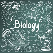 Biology science theory doodle handwriting and tool model icon in blackboard background used for school education and document decoration create by vector poster