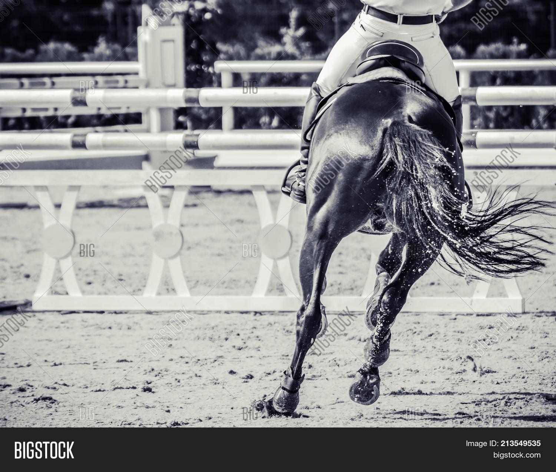 Horse Rider Uniform Image Photo Free Trial Bigstock
