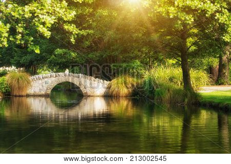 Beautiful Bridge In Botanical Garden