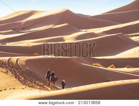 Erg Chebbi sand dunes in the Sahara Desert near Merzouga at early sunny morning, Morocco.  Berber male  guide in traditional dress leading  two tourists on  camels through the desert.