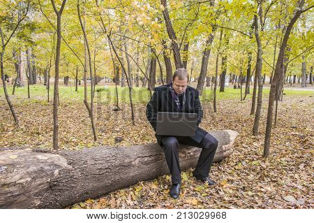 Businessman Having A Laptop In The Park In The Fall. Young Man Sitting On Tree In Park With Laptop O