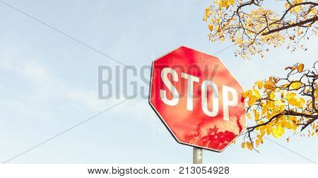 Stop Road Sign On Autumn Day