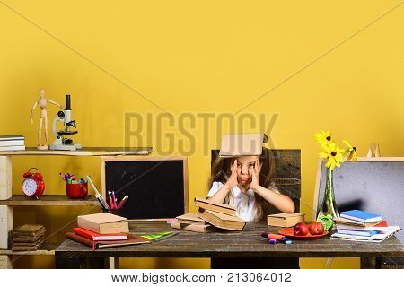 Homework And Study Time Concept. Girl At Desk With Books
