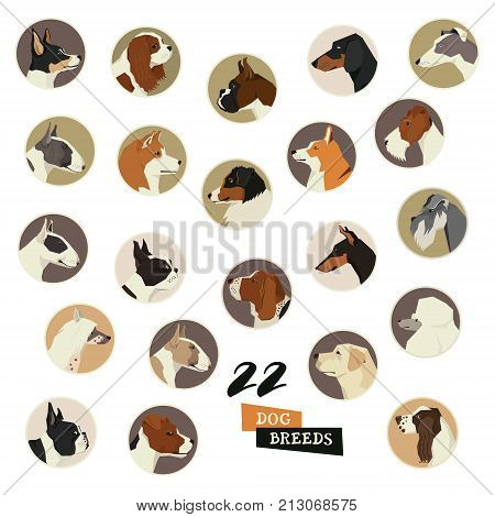 Dog breeds Vector set of 22 icon round frames