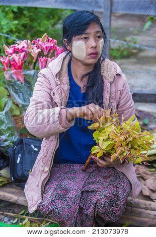 SHAN STATE MYANMAR - SEP 06 : Burmese woman selling flowers in a market in Shan state Myanmar on September 06 2017. Agriculture is the main industry in Myanmar