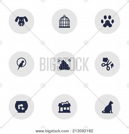 Collection Of Bird, Birdcage, Store And Other Elements.  Set Of 9 Mammal Icons Set.
