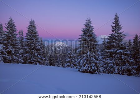 Purple Night In The Winter Mountains