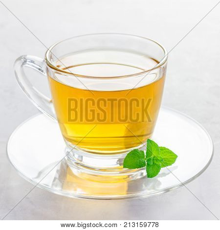 Herbal mint tea in glass cup with fresh peppermint on background square format