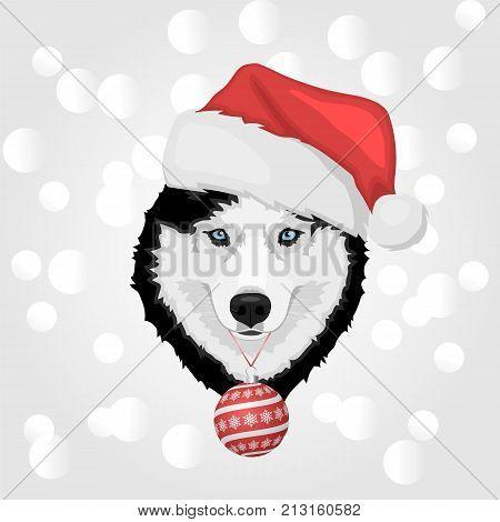 Christmas Husky Dog