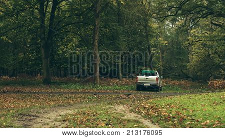 Pick-up truck parked in autumn forest. Wildlifepark Dulmen Germany.