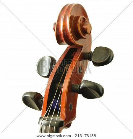 cello fingerboard isolated on a white background