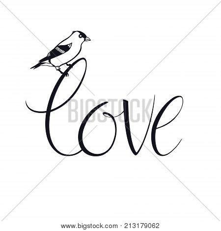 Goldfinch Love Design card Vector Calligraphy set